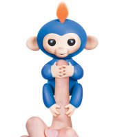 Markoló Maki a kapaszkodó majombarát Kék Markoló Maki