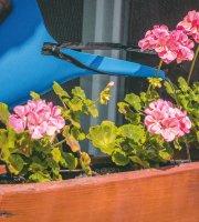 Öntapadós szúnyogháló cipzáros nyílással 130 x 150 cm fekete